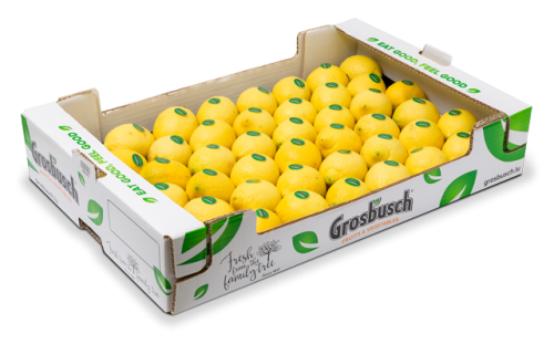 Fruit and vegetables - importation, distribution | Grosbusch