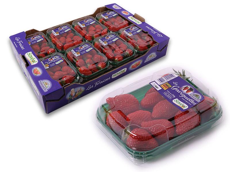 Erdbeeren Gariguette