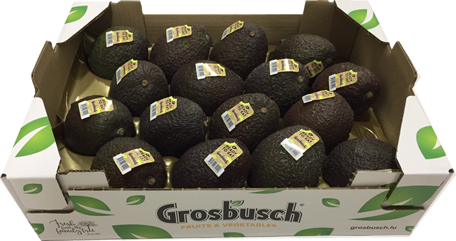 AVOCAT READY TO EAT GROSBUSCH